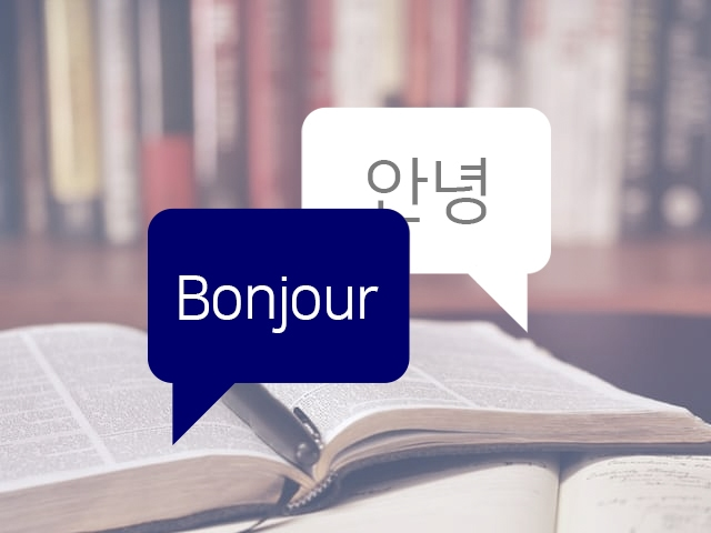 프랑스어 번역