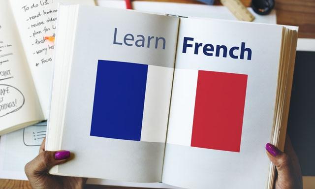 종합 프랑스어 과외
